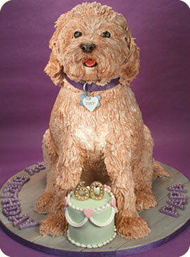 Feliz cumpleaños Dinero Pastel_de_perro