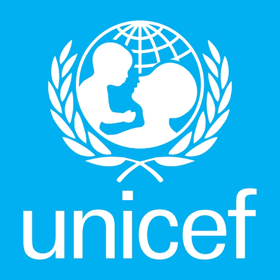 UNICEF Vacancy : Individual Consultant – Support to Young UNICEF capacity and community building