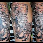 17-bebe-éléphant.jpg