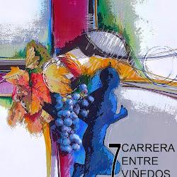 7ª Carrera Entre Viñedos -  (Toño Aguado)