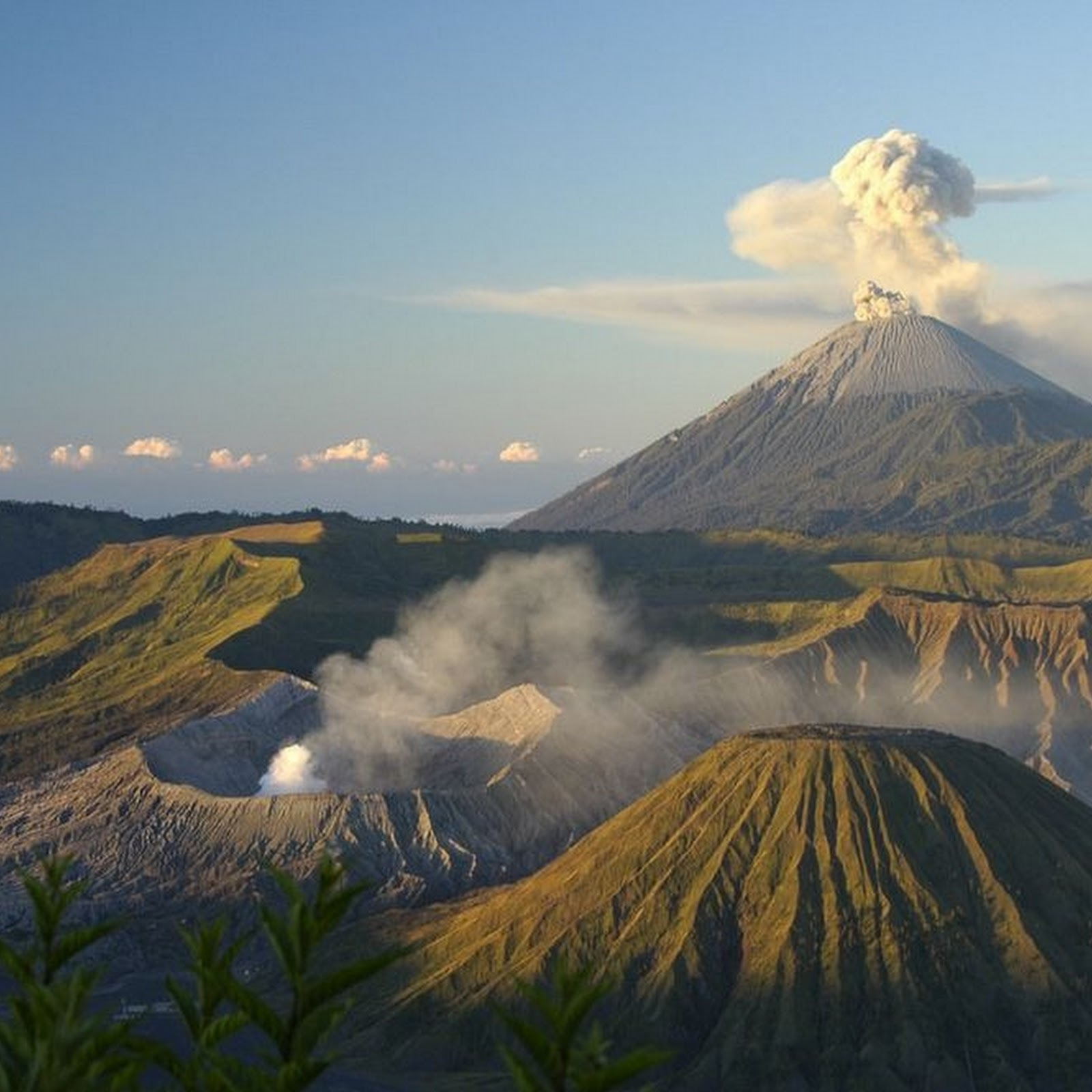 Mount Bromo: The Hungry Volcano
