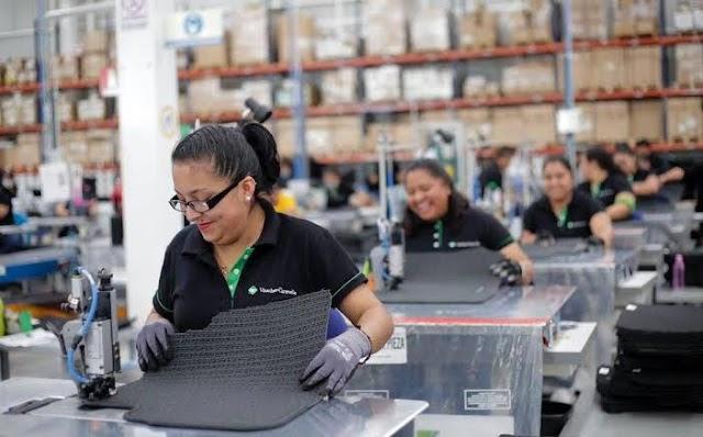 Registra IMSS 20 millones de empleos formales tras debacle de 2020 por COVID-19