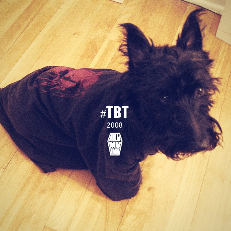 akumuink, scottie, black dog, goth dog, emo dog, hottopic dog, tbt
