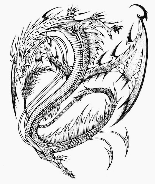 Dragon Pictures To Color Fresh With Images Of Dragon Pictures