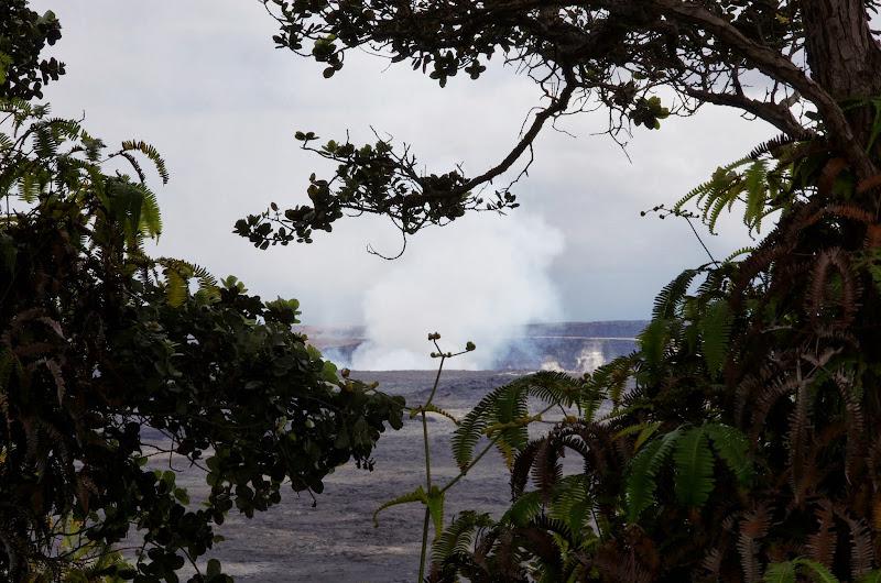 06-20-13 Hawaii Volcanoes National Park - IMGP7831.JPG