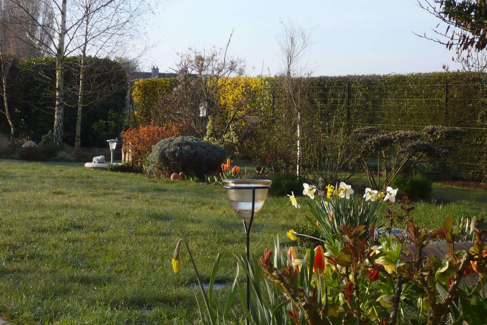 Le jardin de pacalou le premier jour du printemps - 1er jour du printemps ...