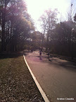 Georgia marathoners in Piedmont Park.