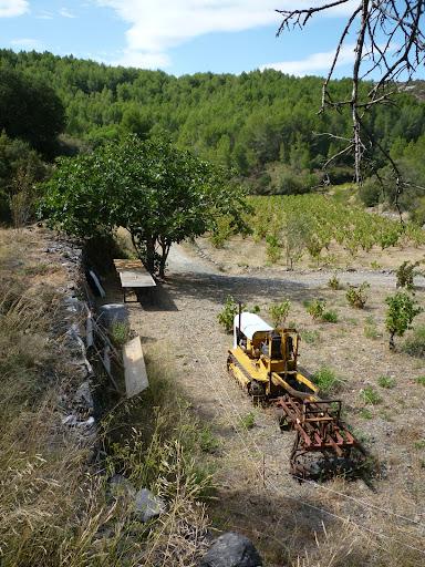 Photographiez des tracteurs ! P1000876