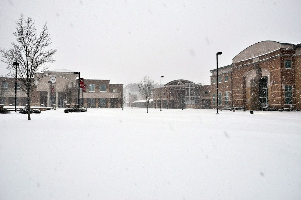 UACCH Snow Day 2011 - DSC_0006.JPG