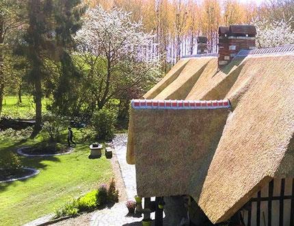 Świeże pokrycie z trzciny na budynku w otoczeniu parkowym wiosną