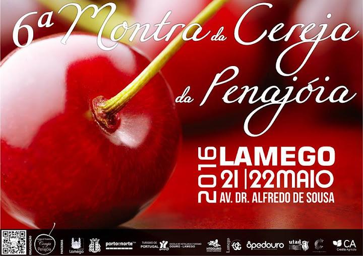 Montra da Cereja em Lamego apresenta bebida com gás inovadora