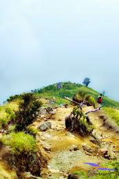 ngebolang gunung sumbing 1-4 agustus 2014 nik 48