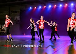 Han Balk Voorster Dansdag 2016-3321-2.jpg