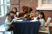 Teddy Bear Tea at the Morris Museum