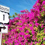 Key West Vacation - 116_5396.JPG