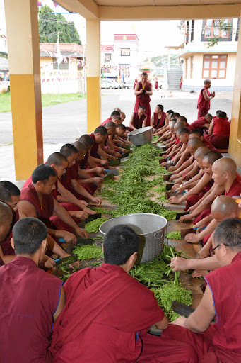 The monks help prepare vegetables.