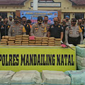 Kapolres Madina Gelar PRESS Release Ungkap Kasus Narkoba Terbesar di Madina