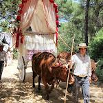 CaminandoalRocio2011_479.JPG