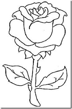 11flores primavera colorear  (30)