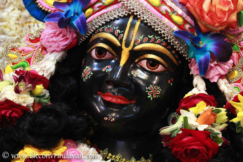 ISKCON Vrindavan Sringar Deity Darshan 29 Feb 2016 (12)
