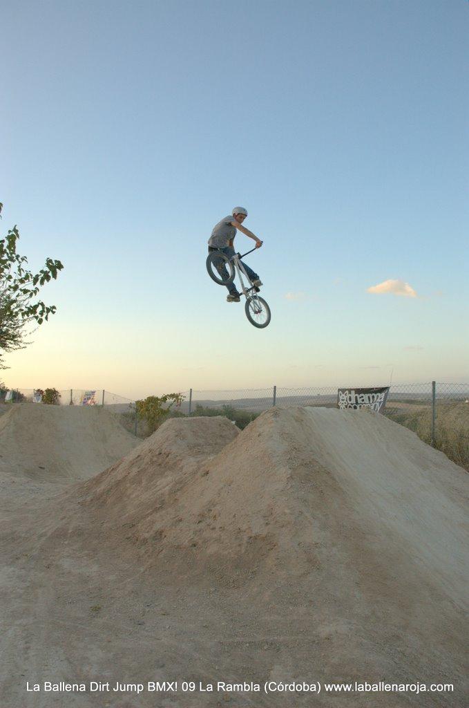 Ballena Dirt Jump BMX 2009 - BMX_09_0155.jpg