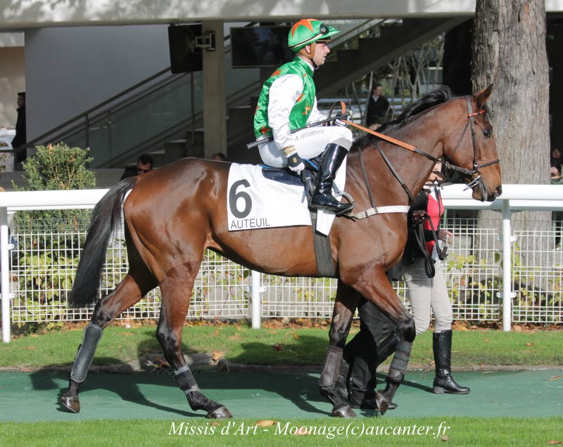 Photos Auteuil 2-11-2014 (48h de l'obstacle) IMG_5188