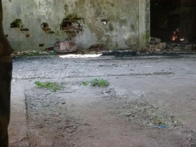 Obóz Ustrzyki 2015 - P1130793_1.JPG