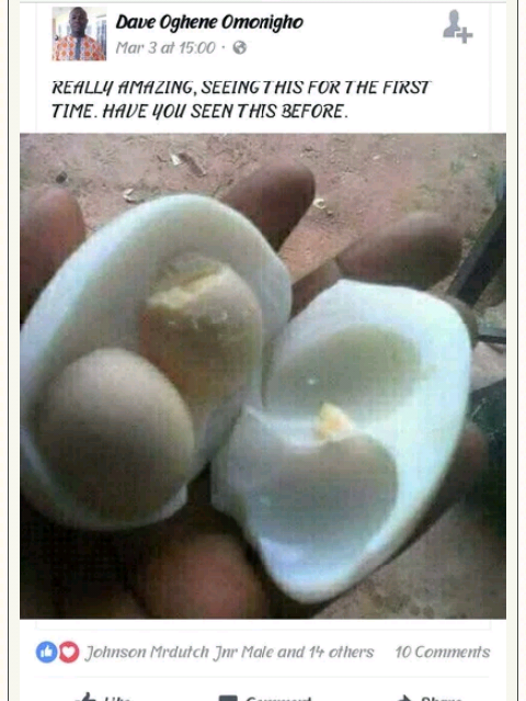 See This Egg With Two Yolks (picture)
