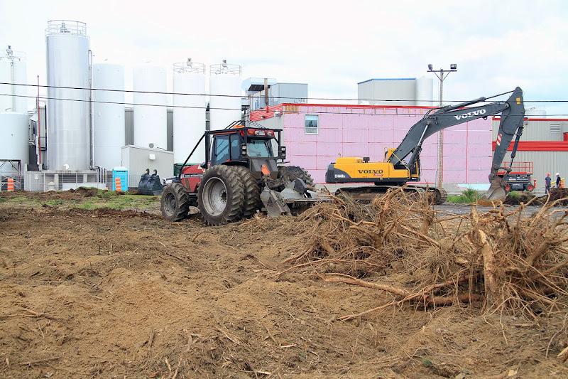 Aménagement Terrain industriel - broyage-pour-amenagement-terrain-industriel-2.jpg