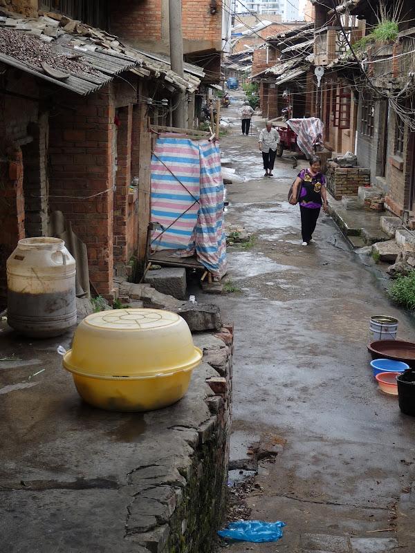 Chine.Yunnan Wen shan et BA MEI 1 - P1260819.JPG