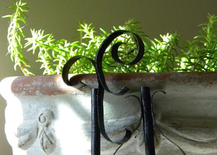 Plant Stick 4