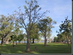170531 064 Kununurra Lake Kununarra and Celebrity Park