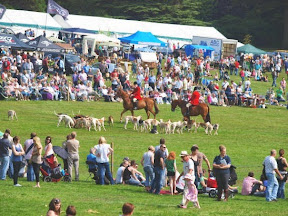 Warning to organisers after village show is cancelled