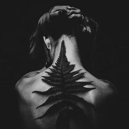 user Wendy Sunata apkdeer profile image
