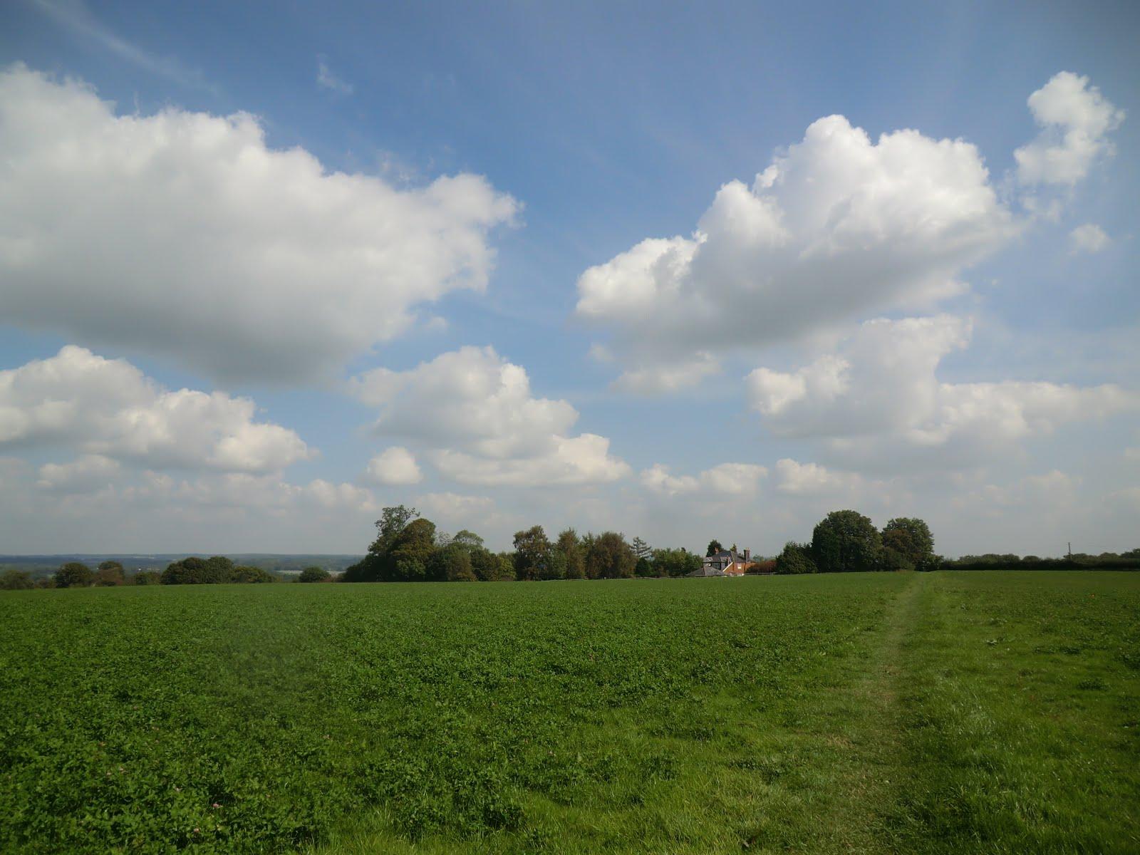CIMG4679 Across an open field on the SOVW