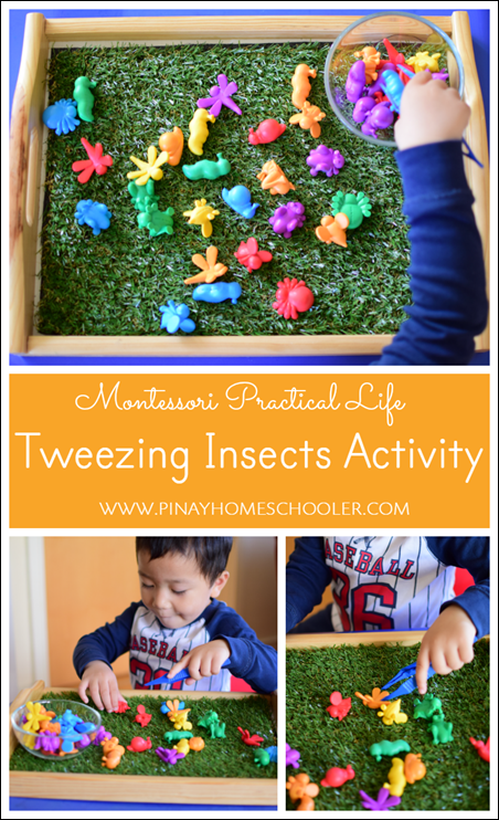 Tweezing Insects