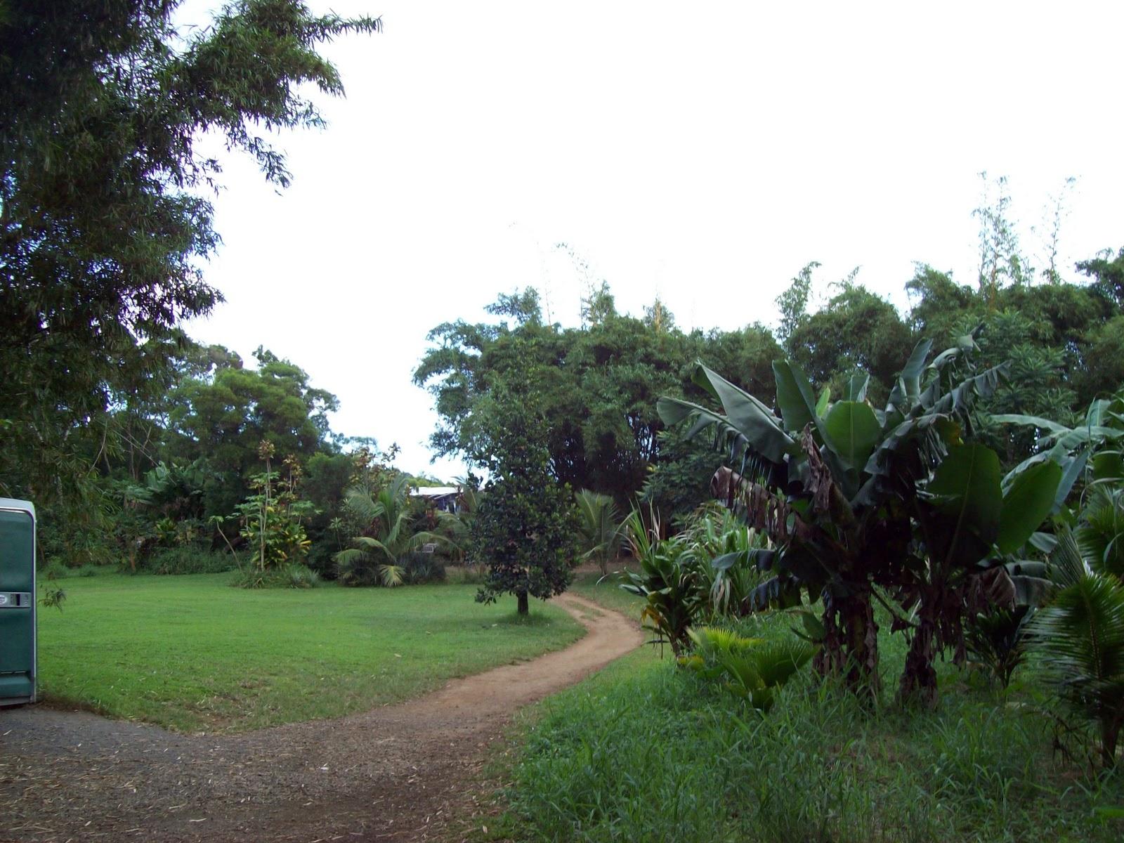 Hawaii Day 5 - 100_7265.JPG