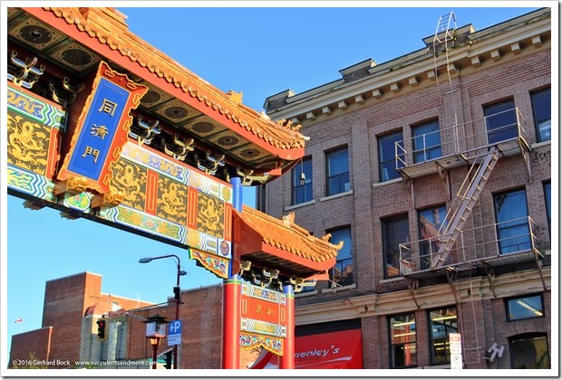 160410_Victoria_Chinatown_0026