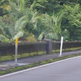 06-23-13 Big Island Waterfalls, Travel to Kauai - IMGP8892.JPG