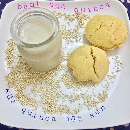 Hạt Quinoa thực phẩm vàng cho trẻ trong quá trình ăn dặm