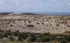 Cabo dos Bahias bei Camarones Pinguinkolonie