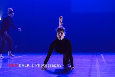Han Balk Voorster Dansdag 2016-5283.jpg