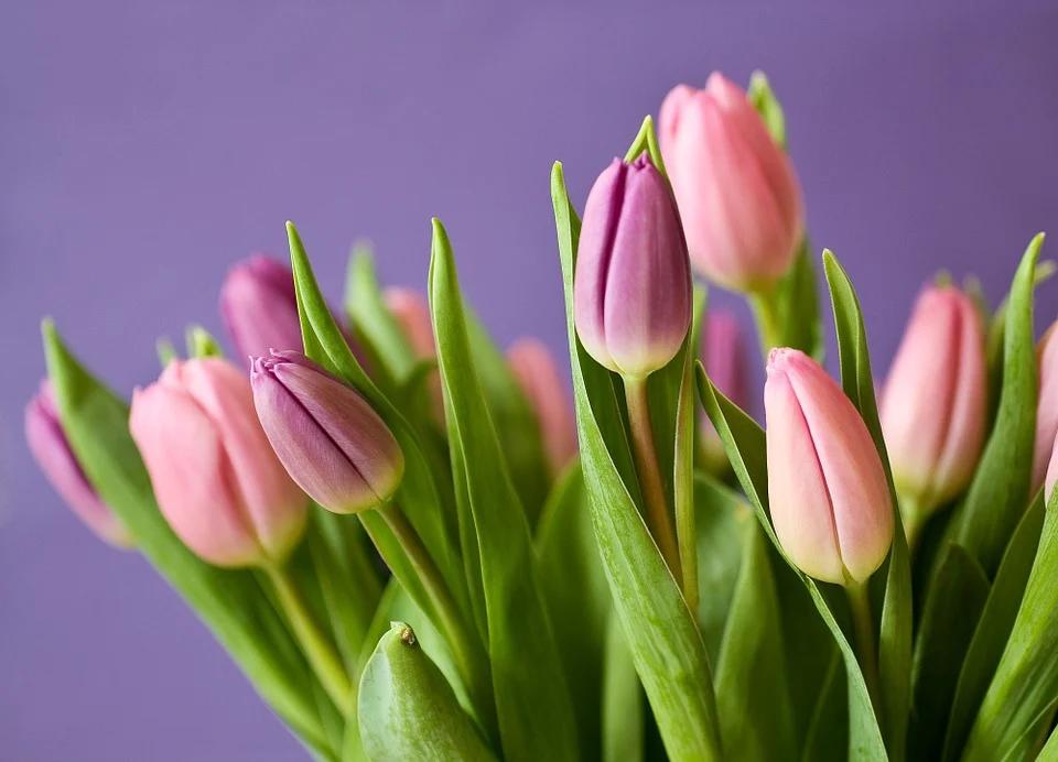Kreatywne pomysły na prezenty z okazji Dnia Kobiet