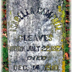 Isabella A. Campbell Gleaves