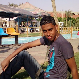 Mostafa Salim Photo 12