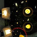 Le dispositif pour la prise des photos : les lampes et la vitre. Umina Beach (NSW, Australie), 21 octobre 2011. Photo : Barbara Kedzierski