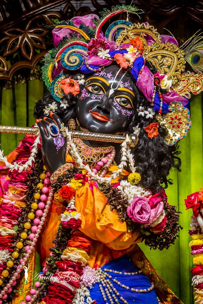 ISKCON Mayapur Deity Darshan 20 Jan 2017 (23)