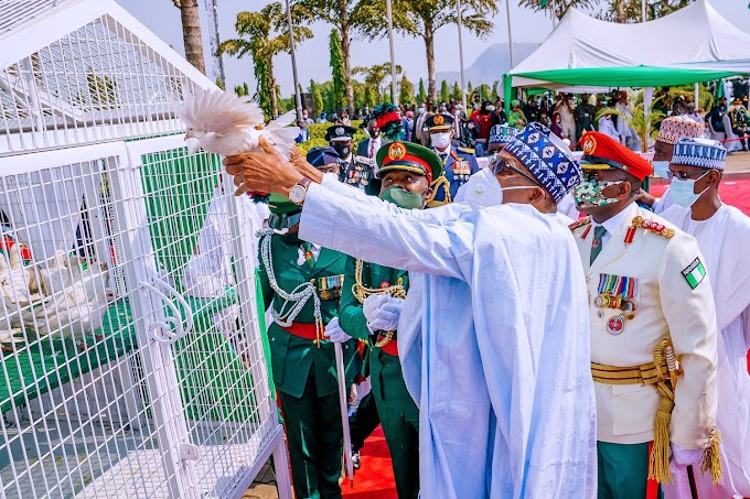 Lol: Nigerians react as the white pigeons released by President Buhari at Armed Forces Remembrance Day celebration refused to fly (video).