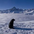 Giorgio Debernardi - 3 - Anche per me un bel panorama dal Bricass.jpg