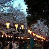 2014 Japan - Dag 1 - maureen-2014-03-30%2B18.09.53-0002.jpg